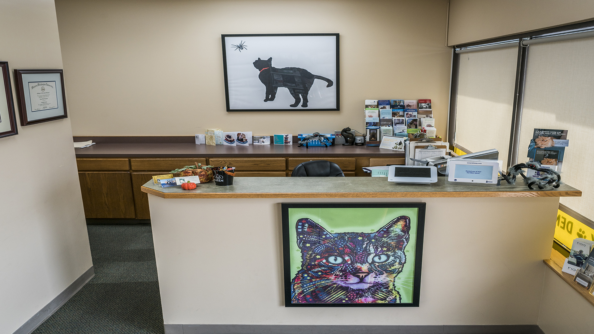 Virtual tour our cat clinic issaquah meadows cat hospital greetings reception m4hsunfo